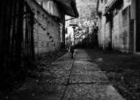 猫撮り散歩1467