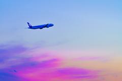~大阪国際空港~pastel sky