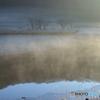 水面に滞在する霧たち