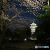 春を迎える松本城