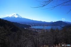 富士山を望む4