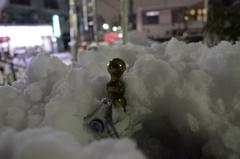 本日の大雪その2