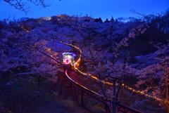 桜の中のスロープカー