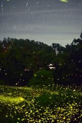 星空と蛍と
