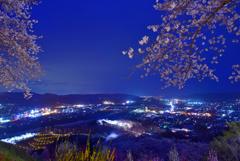 船岡城址桜夜景