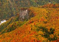 黒岳五合目の紅葉