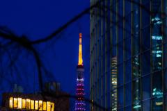 ひっそりと東京タワー