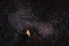 Artistic puddle