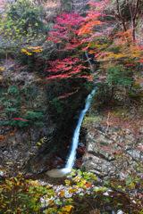 静寂の秋渓