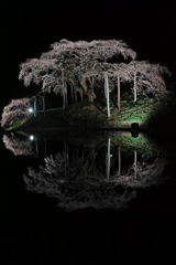 静寂 ~ 中島の夜 ~