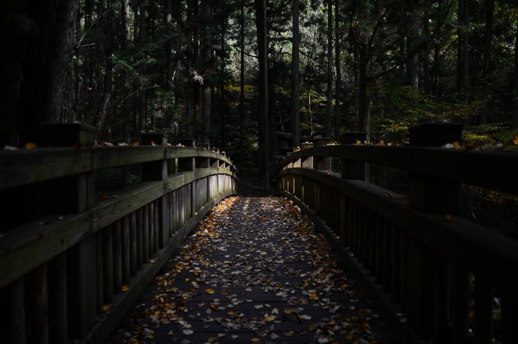 この橋を渡れば
