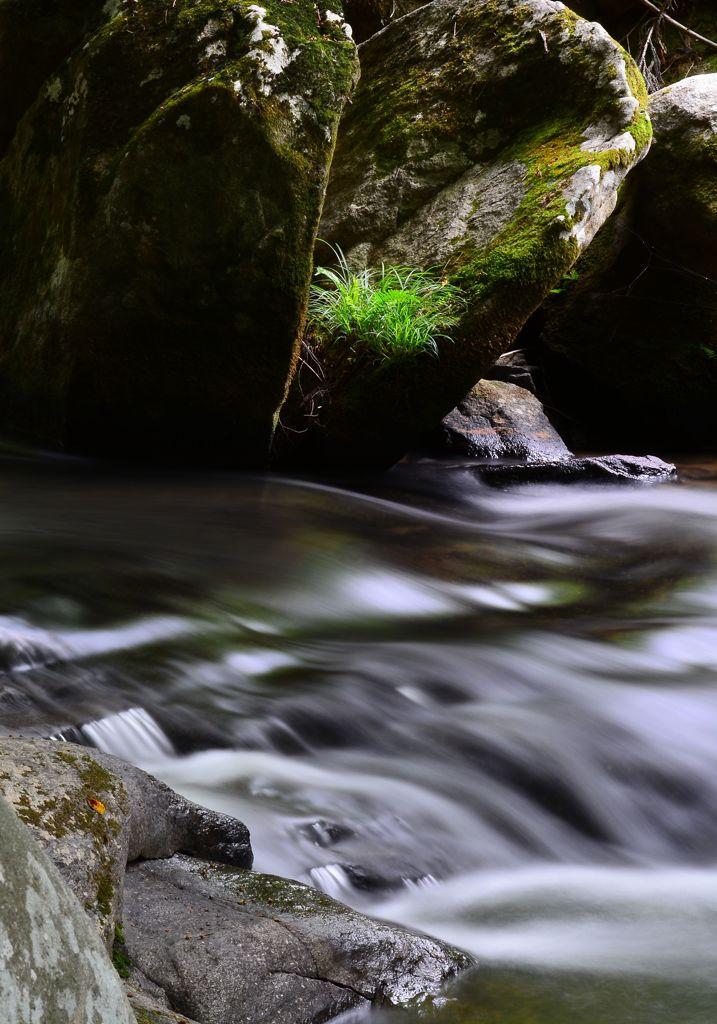 癒しの渓谷 五 ~A smooth flow ~