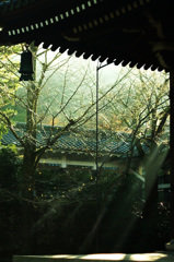 朝の南禅寺-3