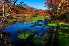 晩秋のグダリ沼 I