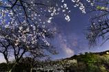 花咲く天の川