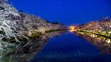 夜の弘前公園 II