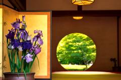 菖蒲の円窓