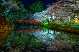 夜の弘前公園 I