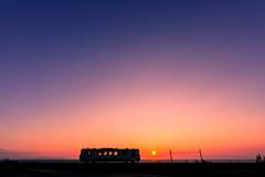 ネコバスと夕陽