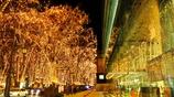 光溢れる街