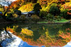 建長寺の秋 I