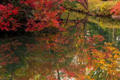 都会の紅葉 I