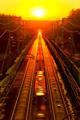 朝陽へつながる路