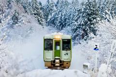 11月の雪景色 V