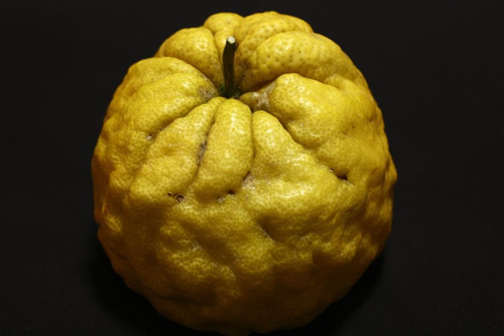 幸福を呼ぶ柚子?