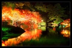 秋夜の栗林公園