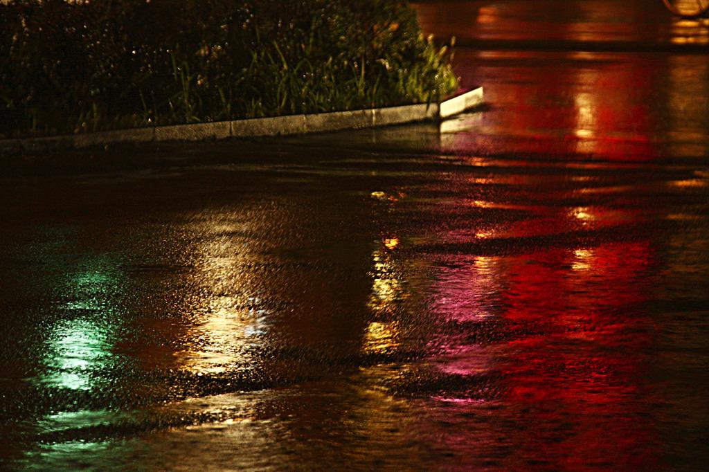 路上の虹彩