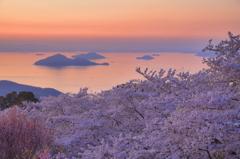 紫雲出の春