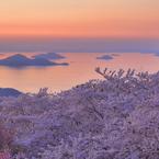 CANON Canon EOS 5D Mark IIで撮影した風景(紫雲出の春)の写真(画像)