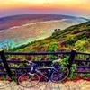 岬へバイク