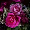 薔薇時間2
