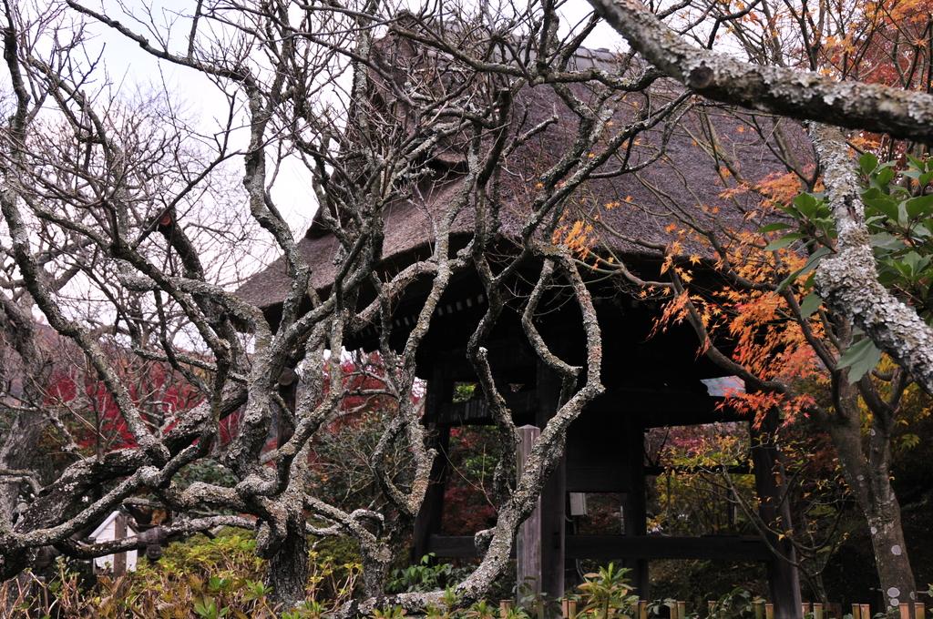 鎌倉 085
