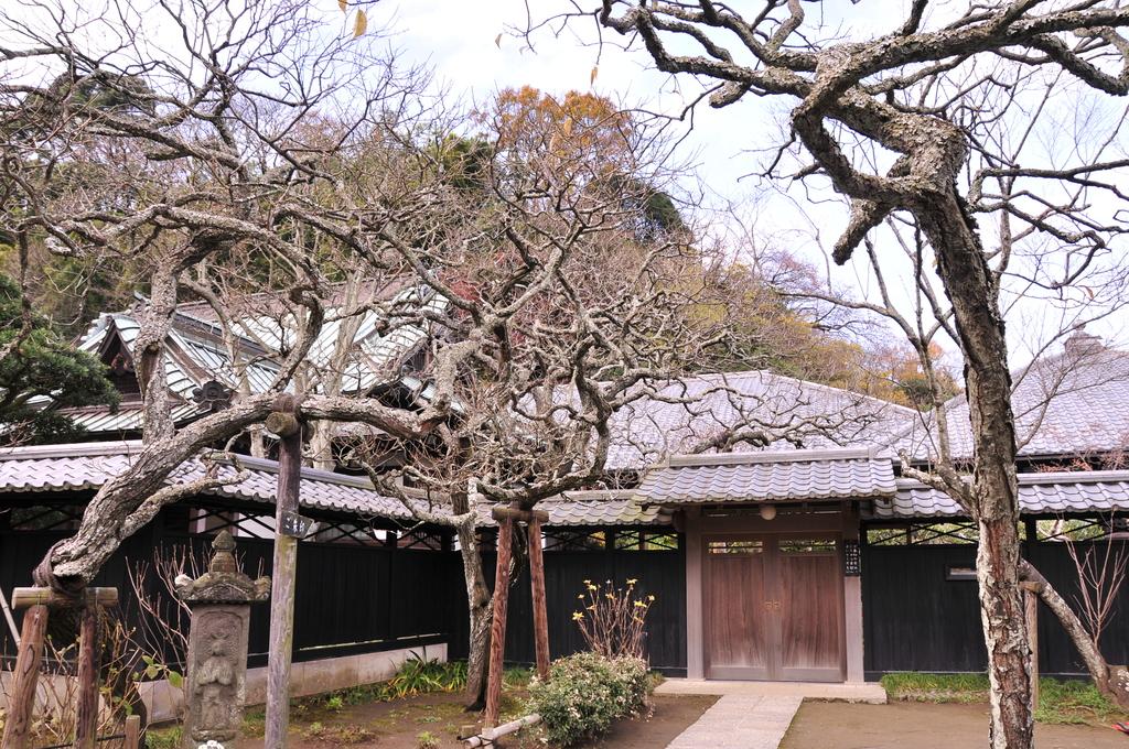 鎌倉 050