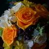 薔薇時間1