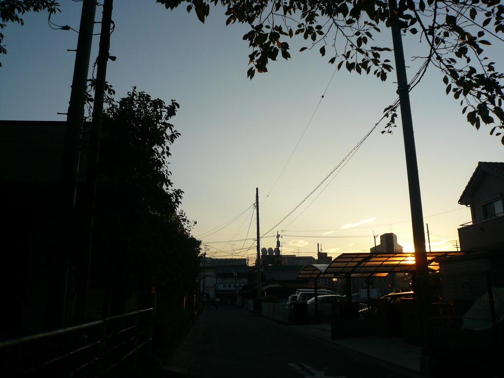 画像 8247