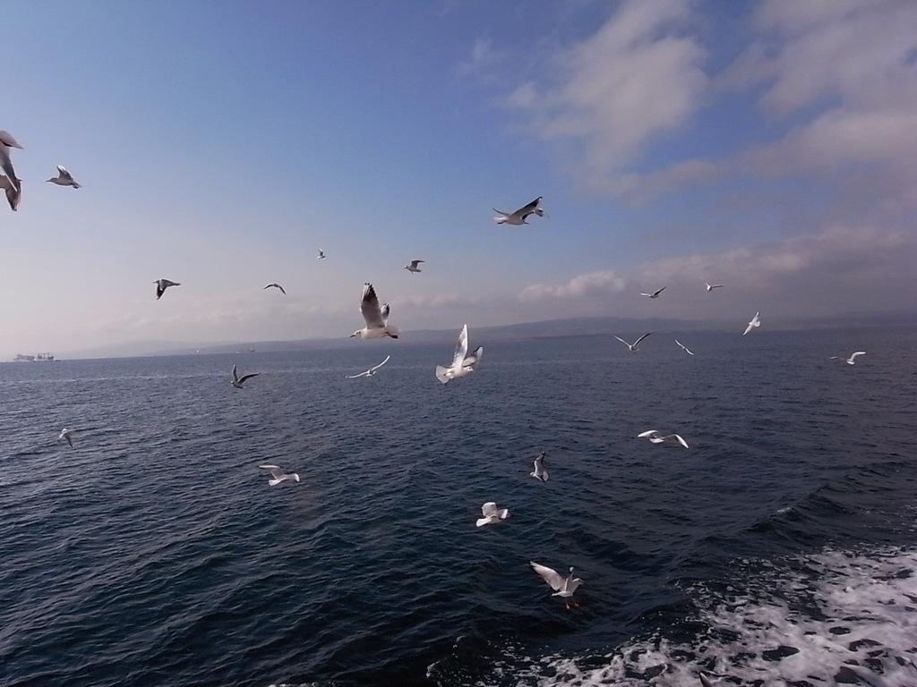 ダーダネルス海峡