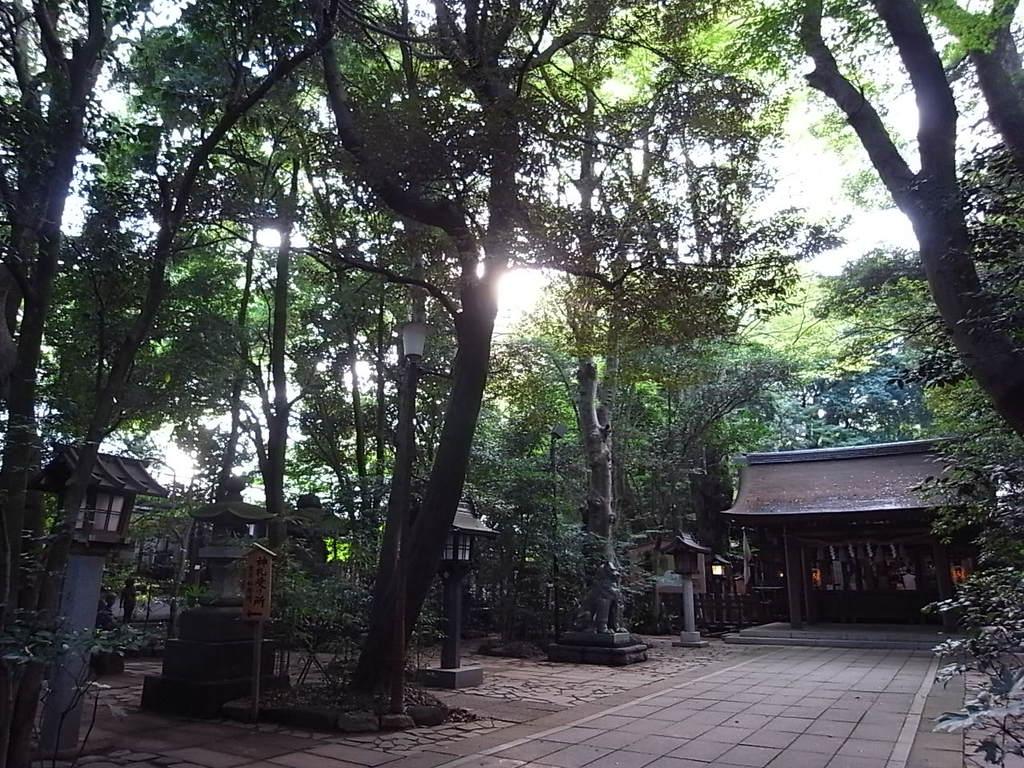 諏訪神社-01