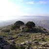 ベルガマ遺跡からの眺め
