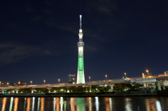 Skytree & Orion