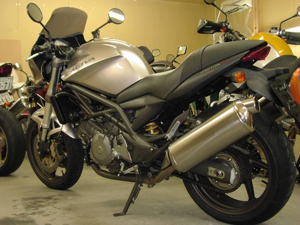 V-Raptor10007