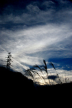 Blue sky ♯02
