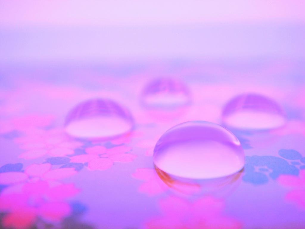 水玉アート【春の兆し】