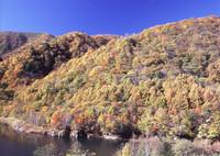BRONICA GS-1で撮影した風景(晩秋の西沢渓谷)の写真(画像)