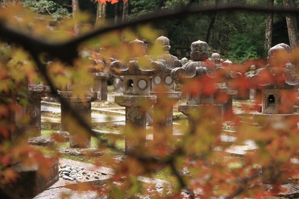 秋の東光寺