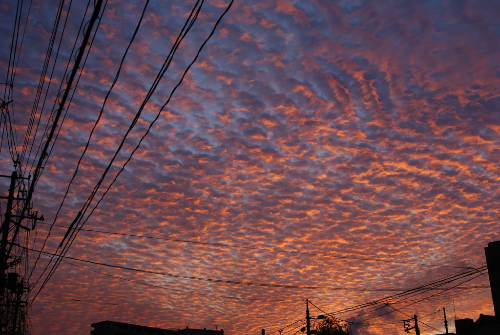 新潟の朝焼け