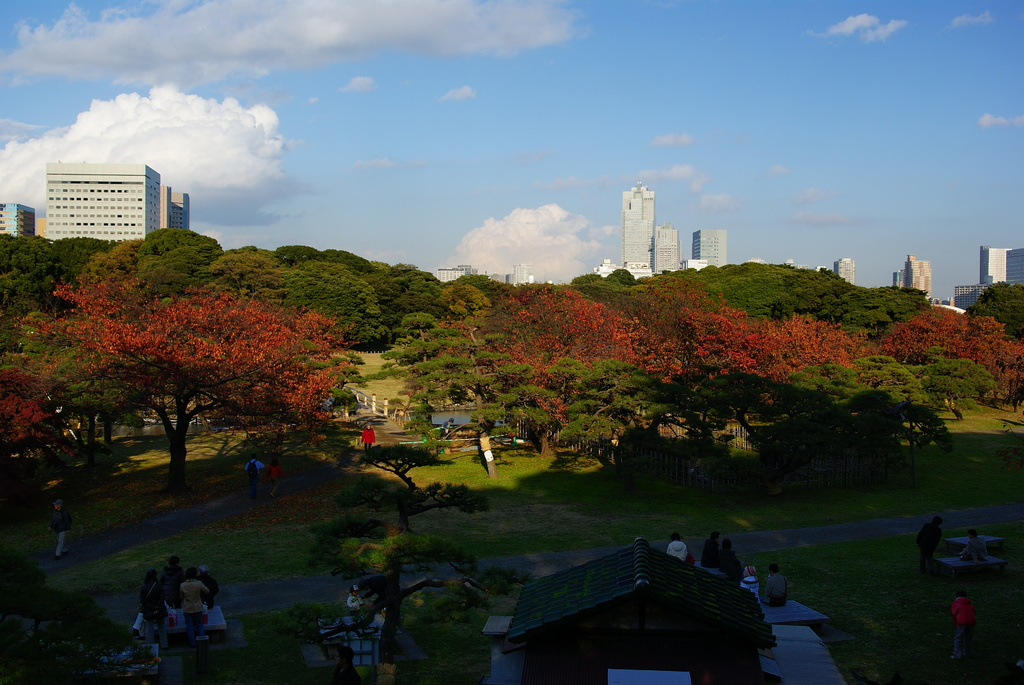 都会の庭園